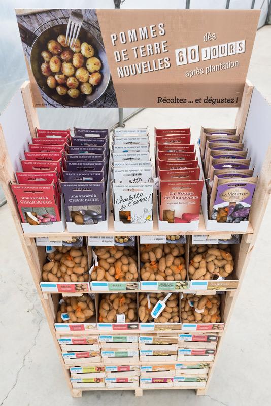 Pomme de terre nouvelle d s 60 jours cdj - Cuisiner des pommes de terre nouvelles ...