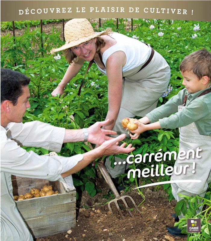 carre-de-jardin_panneaux_pomme-de-terre