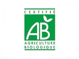 agriculture_biologique_pommedeterre_semences