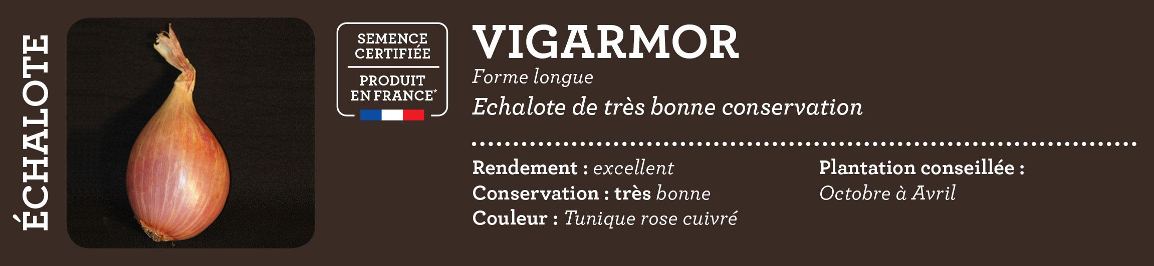 Carre de jardin bulbe potager etiquette vigarmor