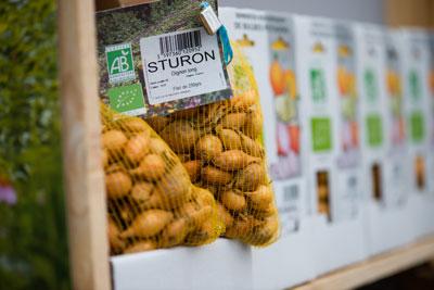 carre de jardin bulbe potager filet biologique