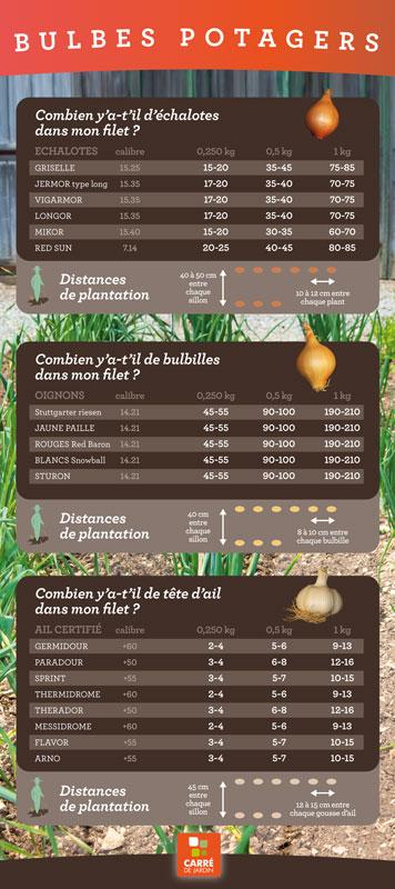 carre de jardin bulbe potager panneau informations