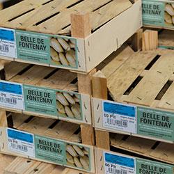 pommedeterre_emballages_etiquettage
