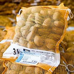 pommedeterre_emballages_plantsnongermees