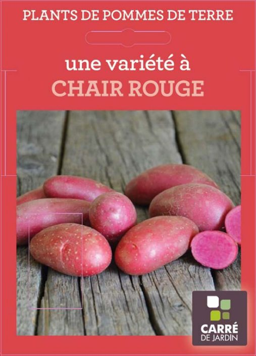 emballage_etui25_chair-rouge