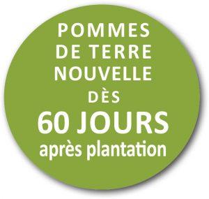 pommedeterre_nouvelle_logo