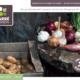 catalogue ets perriol jeudy carre de jardin 2021 2022