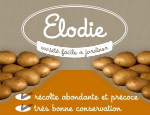 pommedeterre-logo-elodie