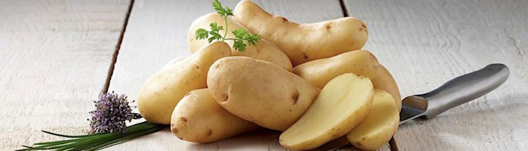 pommes de terre ratte